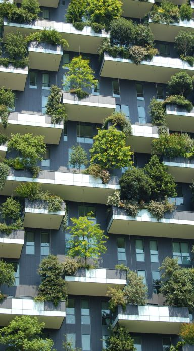 bosco-verticale-in-milan