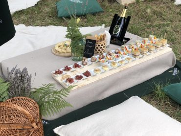 Altemasi Summer Picnic 1